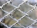 Free Metal Mesh Royalty Free Stock Image - 460036