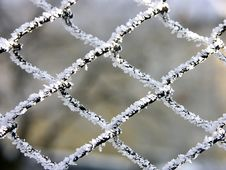 Free Metal Mesh Royalty Free Stock Image - 460036
