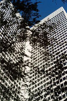 Free Skyscraper Stock Images - 460044