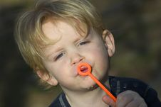 Free Blowing Bubbles Stock Images - 463764