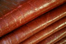 Free Leather Stock Photo - 464910