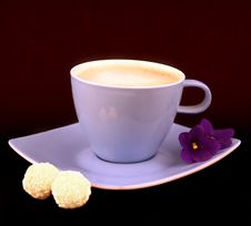 Free COFFEE CUP Royalty Free Stock Images - 4600029