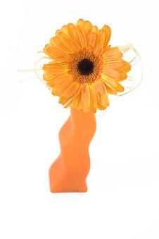 Free Orange Flower Royalty Free Stock Photography - 4600447