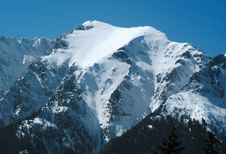 Free Carpathian: Bucsoiu (2492 M) Stock Photos - 4600873