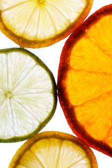 Free Detail Of Lemon And Lime And Orange Slices Royalty Free Stock Photography - 4601487