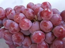 Free Red Grapes Royalty Free Stock Images - 4601569