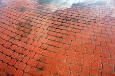Free Wet Path Stock Photo - 4602550