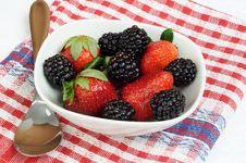 Free Fresh Berries Stock Image - 4603731