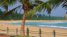 Free Palm And Seaside In Sanya Stock Images - 4604364