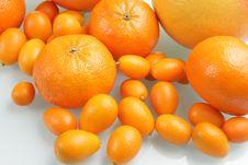 Free Citrus Stock Image - 4605441