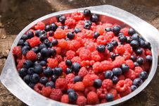 Free Plate With Raspberry And Blueberry Royalty Free Stock Images - 4607039