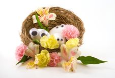 Free Floral Googly Nest Stock Image - 4609421