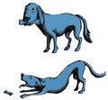 Free Dog With Bone Stock Images - 4617454