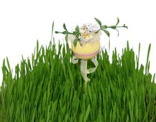 Free Egg With Easter Rabbit In Fresh Grass Stock Image - 4611241