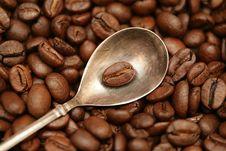 Free Grain Of Coffee Stock Photos - 4611513