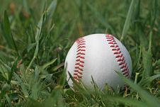 Free Baseball Royalty Free Stock Image - 4612836