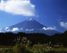 Free Mt Fuji-435 Stock Photography - 4612892