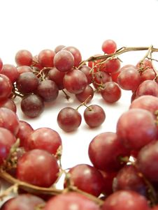 Red Grape Ring On White, Vertical Royalty Free Stock Image
