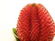 Free Upside Down Strawberry, Horizontal Royalty Free Stock Photography - 4619537