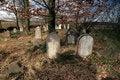 Free Jewish Cemetery Stock Photos - 4629813