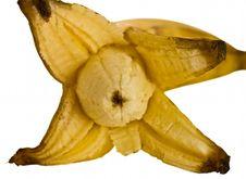 Free Opened Banana Stock Photography - 4623452