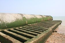 Free Cement Pipeline Covered With Seaweed Royalty Free Stock Image - 4623736