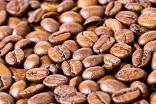 Free Coffee Beans Royalty Free Stock Photo - 4624685