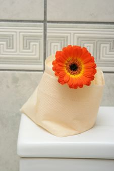 Free Bathroom Tissue Royalty Free Stock Image - 4625166