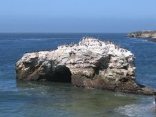 Free Santa Cruz Royalty Free Stock Image - 4627946