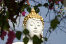 Free Buddha Image Stock Image - 4628651