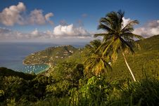 Free Tortola Explorations Royalty Free Stock Photos - 4629698