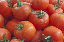Free Tomatoes Background Royalty Free Stock Images - 46231019