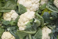 Free Macro Ripe  Cauliflower Isolated Royalty Free Stock Photos - 46231308