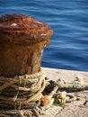 Free Sea Coast Royalty Free Stock Photography - 4631657