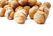 Free Walnuts Stock Photo - 4630680