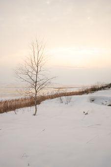Free Lake Royalty Free Stock Image - 4630976