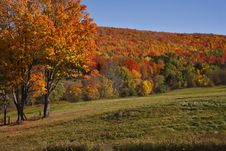 Free Autumn Countryside Royalty Free Stock Images - 4631589