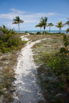 Free Way To Tropical Beach Royalty Free Stock Photo - 4631695