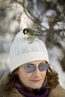 Free Great Tit On Girl S Head Royalty Free Stock Images - 4631729