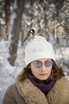 Free Great Tit On Girl S Head Stock Images - 4631734