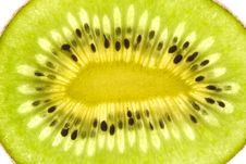 Free Kiwi Slice Stock Photography - 4631992
