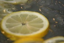 Free Lemon Slice Stock Photos - 4632573