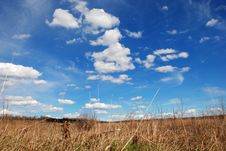 Free Clouds Above Grass Royalty Free Stock Images - 4633069