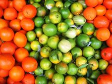 Free Varies Fruits Stock Images - 4639024