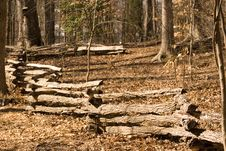 Split Rail Fence In Forest Stock Photography