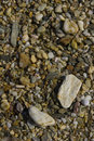 Free Stoney Beach Detail Stock Photo - 4648290