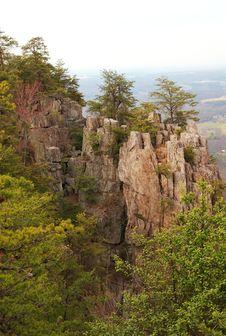 Free Cliff Ridge Mountain With Trees Stock Photo - 4644710