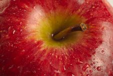 Free Close Up Red Apple With Water Droplets Stock Photography - 4644772
