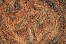 Free Hay Stock Photos - 4645303