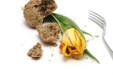 Free Tulip And Bread Stock Photos - 4651693